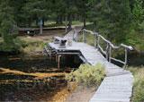 Турбаза Медвежий угол, парковая зона на территории турбазы