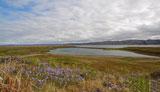 Озеро Могильное, остров Кильдин